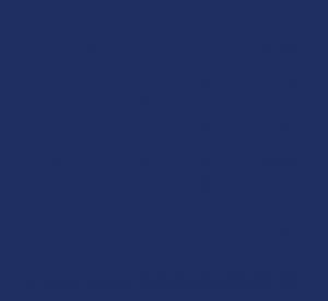 ProTalent Logo